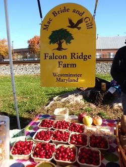 Falcon Ridge Farm
