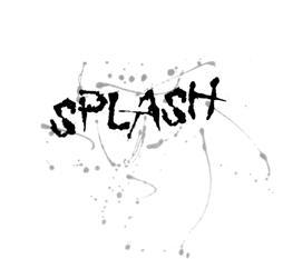 Splash Hair and Photo Studio